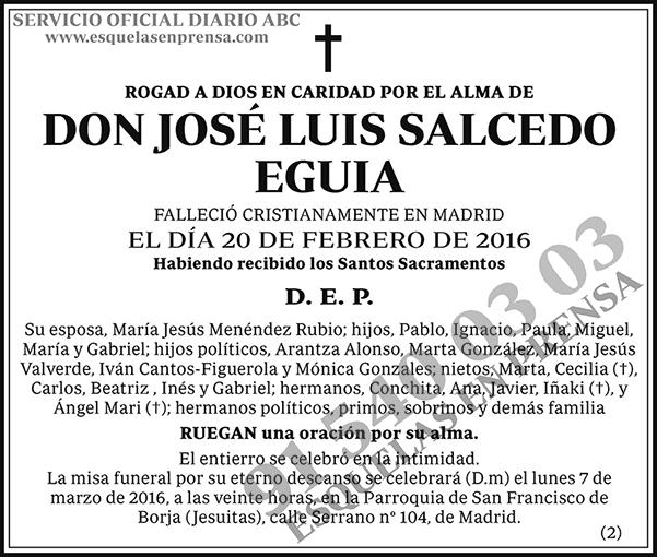 José Luis Salcedo Eguia
